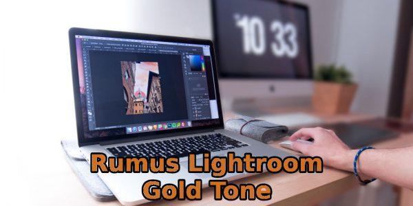 Rumus Lightroom Rose Gold Kekinian