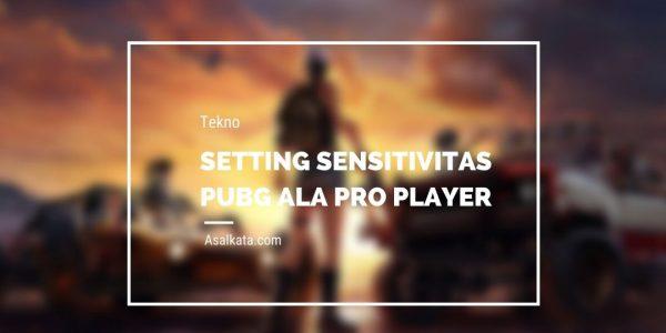 Setting Sensitivitas PUBG Ala Pro Player