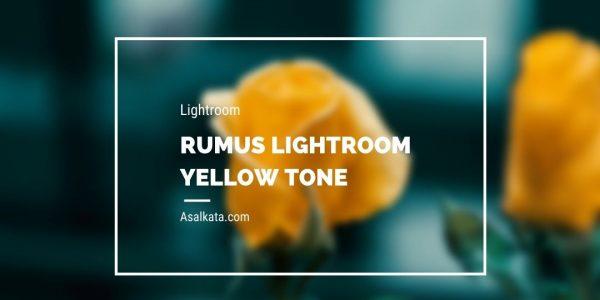 Rumus Lightroom Yellow Tone